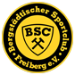 bsc_freiberg.png